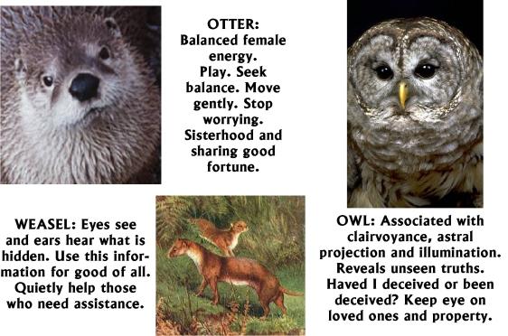Otter Weasel Owl